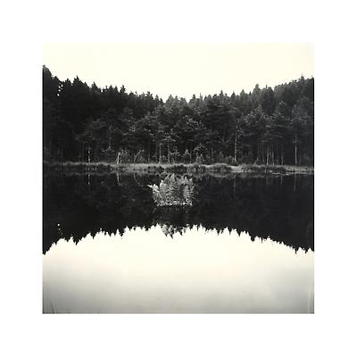 http://pacea.fr/Director/albums/album-8/lg/157.png