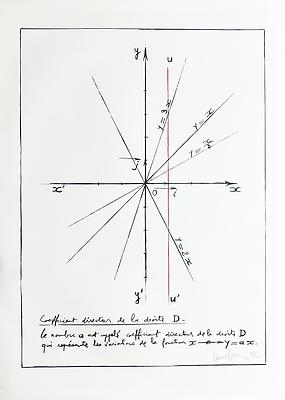 http://pacea.fr/Director/albums/album-304/lg/Bernar_Venet_Coefficient_directeur_de_la_droite_D.jpg