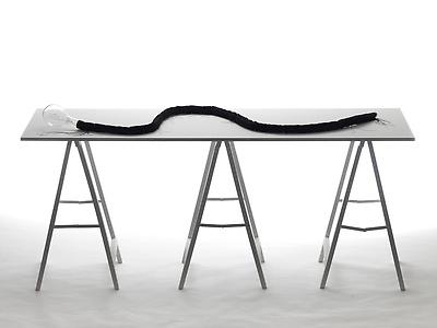 http://pacea.fr/Director/albums/album-83/lg/AnimalTotem_InstallationSculpture_FrontalView_AlexandraLoewe__Copier_.jpg