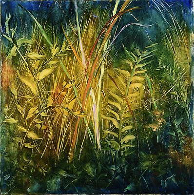http://pacea.fr/Director/albums/album-302/lg/Natural_Grasses.jpg