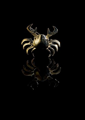 http://pacea.fr/Director/albums/album-14/lg/img_1298471003_778_lg.jpg